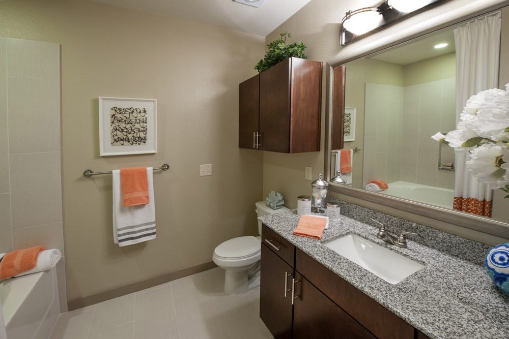 One Bedroom Apartment For Rent In Sugarland Tx